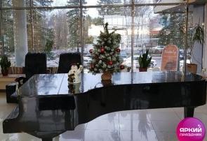 «Яркий Праздник» в отеле «Репинская»
