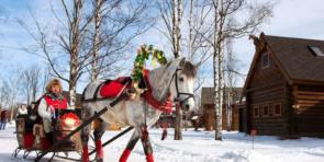 Экскурсия Русская Масленица в деревне