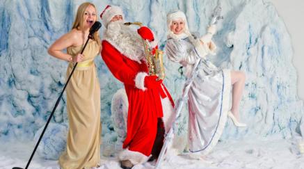 Корпоративный Новый год в Павловском Дворце, проведение праздника